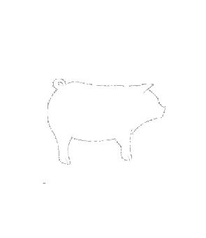 Ciboulette pig icon